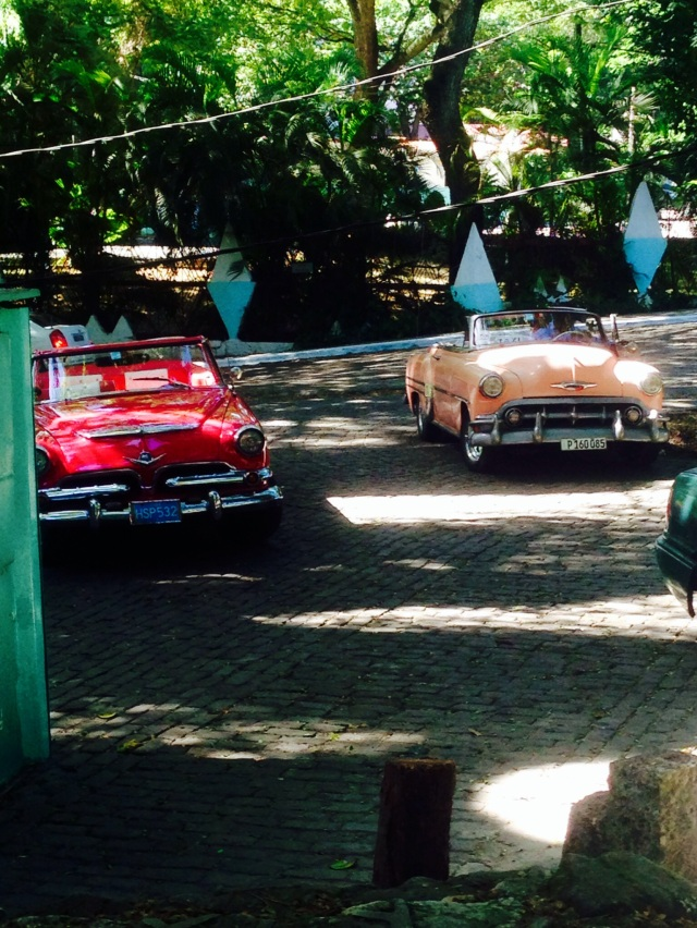 Classic cars in the city jungle