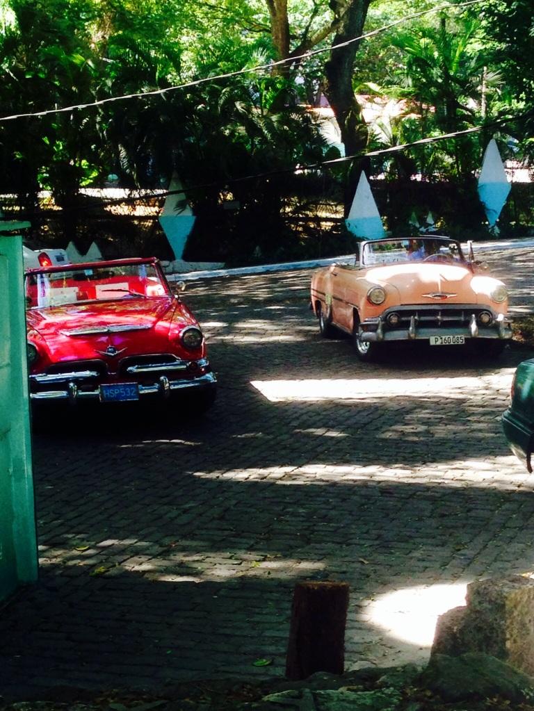 Classic cars in the city jungle