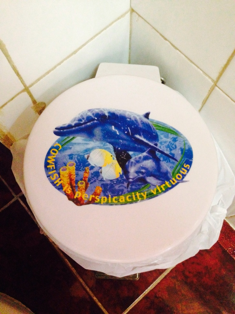 My bin at the casa. Too good. What does it mean?!