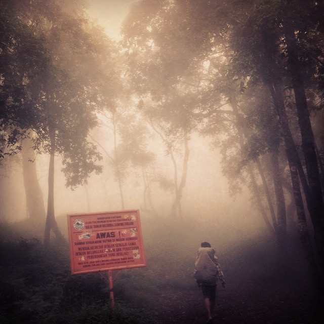 Will we ever find the lunch stop in the mist??