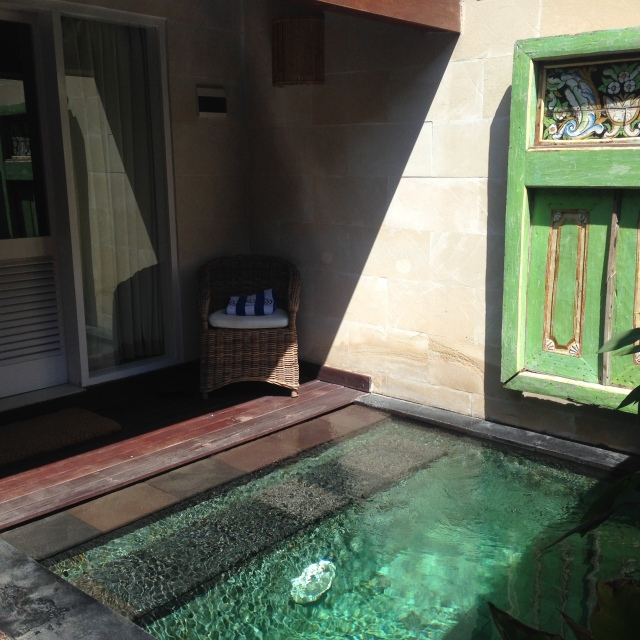 Private plunge pool room!