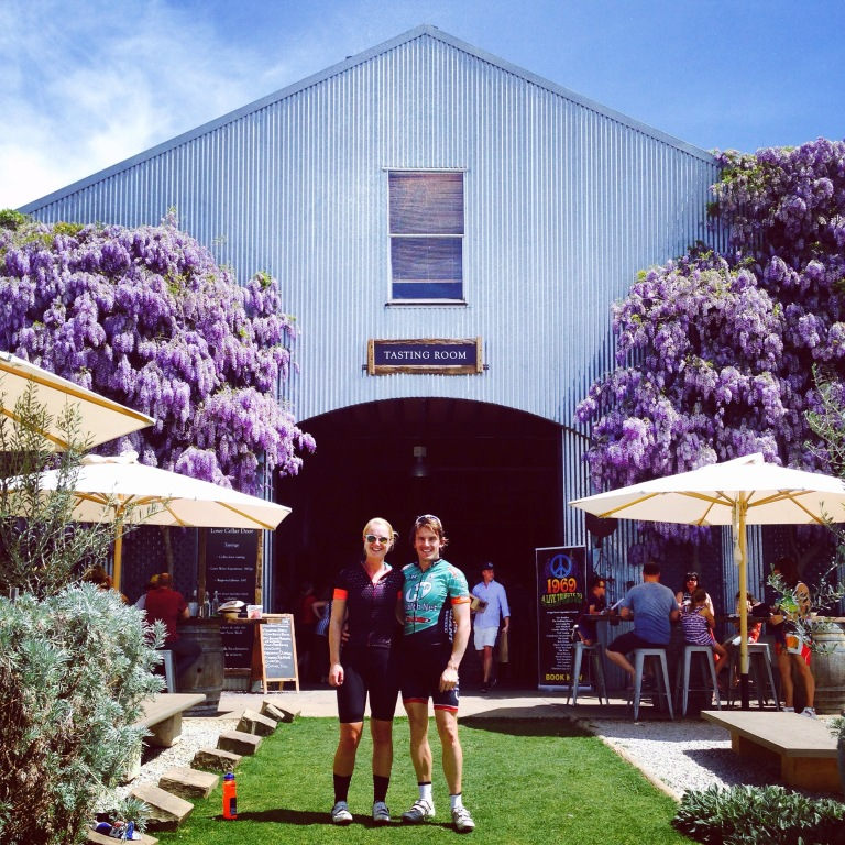 The beautiful tasting room and garden at Lowe estate