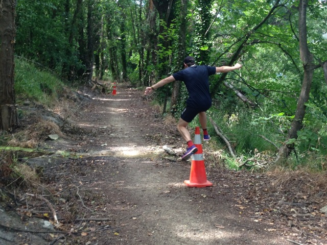Roxburgh runs