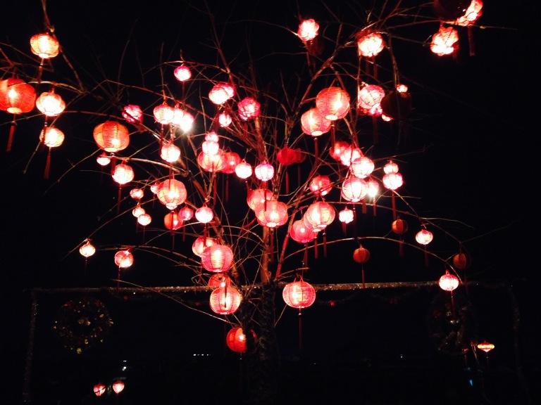 Tree by night!